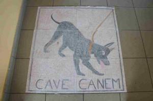 cave-canem-300x199